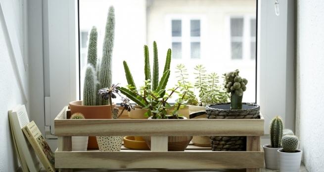 C mo decorar la casa con flores artificiales alto lago for Casa cristina plantas artificiales